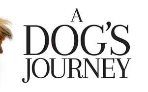 Review: A Dog's Journey